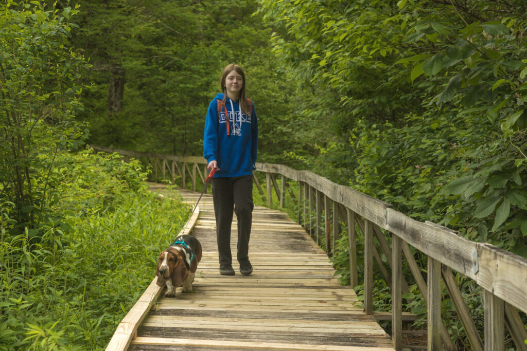 Dog hiking at the Pink Beds with owner