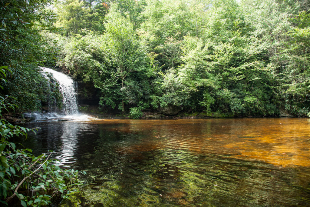 View from the banks of Schoolhouse falls in Panthertown Valley, this is one of best hikes for dogs