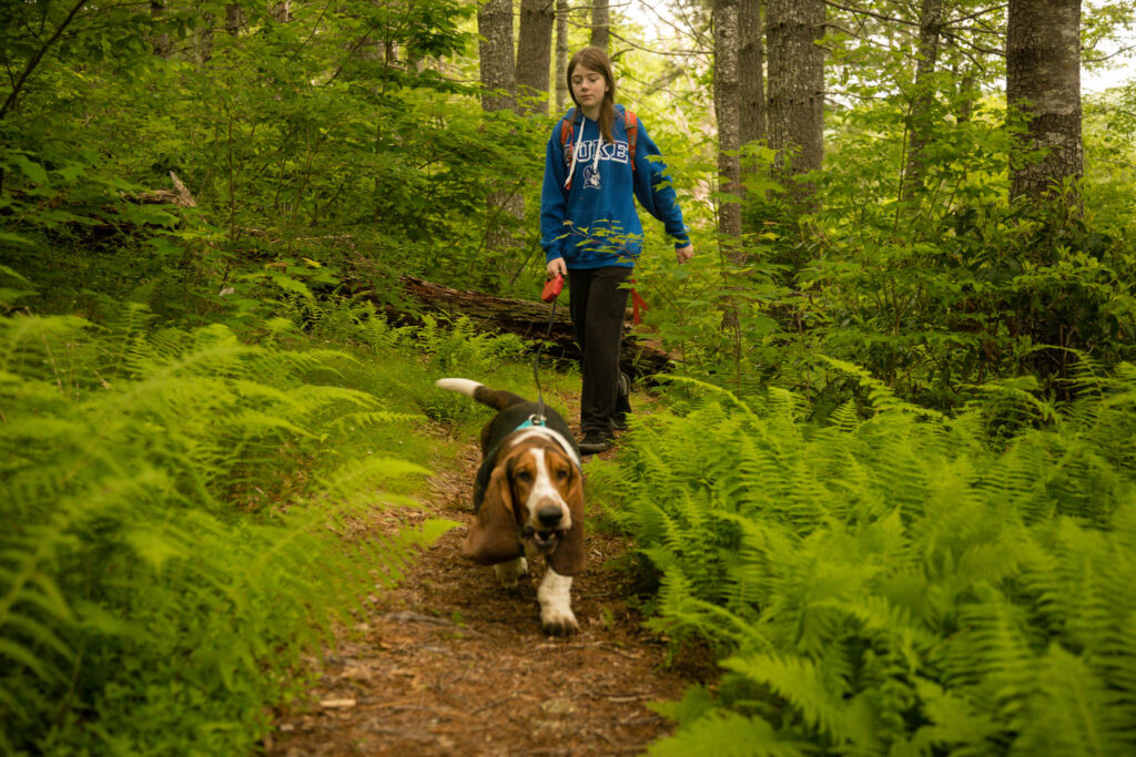 Basset Hound and owner taking a hike in the Pink Beds