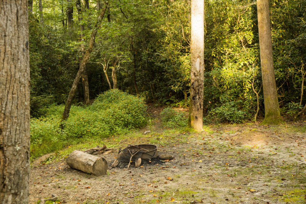 View of the roadside campsite in Pisgah National Forest