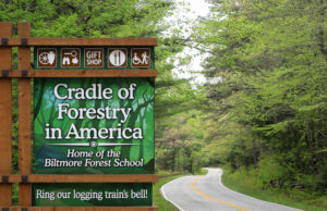 Photo of the sign leading in on the main road to the Cradle of Forestry.